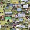 Regionale Jugendmeisterschaft BW II DMFV Hechingen  02.06.2012